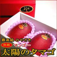 宮崎の完熟マンゴー(太陽のタマゴ)は、樹上で完熟させ、自然落果で収穫するため、食味が非常にすぐれてい...
