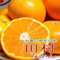 紀州有田の「田村みかん」は和歌山みかんを代表する高級ブランドの一つです。田村の南国の太陽と海と大地か...