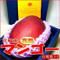 宮崎の「完熟マンゴー」は、樹上で完熟させ、自然落果で収穫するため、食味が非常にすぐれています。 外観...