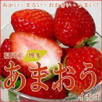 福岡特産の「あまおうイチゴ」は、赤く、丸く、旨いというのが、名前の由来です。その赤い色が食欲をそそり...