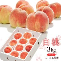送料無料 白桃 約3kg(10-12玉前後)中玉 ※もも、桃、モモ、ピーチ、山形産、お中元、ギフト、贈答、残暑見舞い