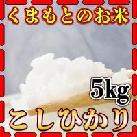 くまもとのお米新米30年産の熊本県産コシヒカリ5kg 全国的に一般的な品種で美味しくいただけます  ...