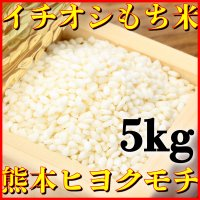 九州熊本県産のもち米ヒヨクモチ精白米  産地、九州熊本県 容量、5kg 品種、ヒヨクモチ 年産、29...