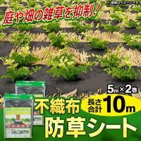 ★合計10m分!単品で買うよりおトクな2枚組★  雑草を刈る時間・労力を大幅短縮! 一度の作業でしつ...