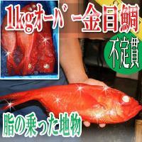 サイズが、1kgオーバーの大きな金目鯛です。 また房州の釣りの地物ですので、脂もあり、 頭等も無駄無...