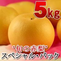 鳥取産赤梨のスペシャル・パッケージをご用意しました。旬の赤梨(豊水・秋月・新高・新興など)の中から食...