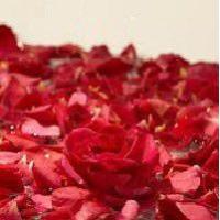 奥出雲薔薇「さ姫」プレミアム 魅惑の薔薇のソーダ スパークリング・ローズ ギフトボックス入 200ml×6本[計1,200ml]|toretatesonomama|05