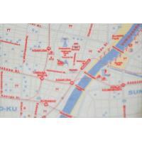 値下げ!キャンバス地友好都市totemap Sトート片面/東京地図&片面/友好都市のLondon地図