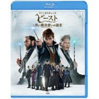 ファンタスティック・ビーストと黒い魔法使いの誕生 Blu-ray Disc