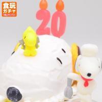■商品名:スヌーピー バースデーケーキ ■英語名:PEANUTS SNOOPY's Birthday...