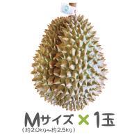 タイ産ドリアン Mサイズ 約2.0kg~2.5kg 1玉入り(モントーン種)