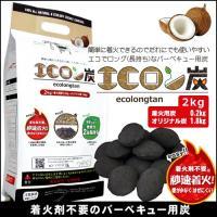豆炭 バーベキュー 炭 2kg 燃料 アウトドア 木炭 コンロ エコロン炭 着火用炭0.2kg ヒラキ|truetools