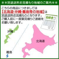 工進 ウインチ ミニカール RED-2012H|truetools|02