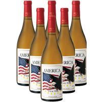 アメリカ土産 アメリカお土産 みやげ おみやげ アメリカンイーグル 白ワイン 6本  アメリカの象徴...