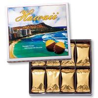 ハワイお土産 ハワイ土産 ハワイおみやげ/ハワイ パイナップルチョコレートクッキー 1箱/ハワイお土...