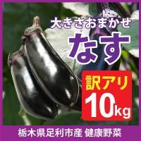 足利産 ナス 10kg セット なす 茄子 栃木県 野菜  産地直送