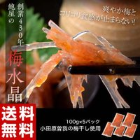 創業430年 鮑屋の梅水晶 100g×5袋 小田原 曽我の梅肉使用 おつまみ 肴 うめ ウメ 冷凍 送料無料