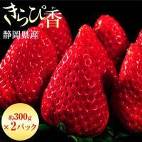 いちご ギフト 静岡県産 きらぴ香 約300g×2パック(等級:グランデ又はデラックス)イチゴ 苺 フルーツ 果物 贈り物 プレゼント お礼 お返し お祝い 冷蔵