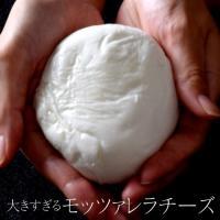 日本のある量販店で販売予定だったイタリア産モッツァレラチーズ。 量販店は250gの規格で製造を依頼し...