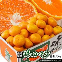 みかん 送料無料 長崎県産みかん 味ロマン 約2.5kg (S~L) 【糖度12度選別】