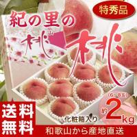 """築地は関東圏ですのでなかなか和歌山の桃が入ってきません。 ですが、関西以南を中心にこの""""紀の里の桃""""..."""