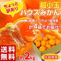 なんと、夏ギフトの高級果実が訳あり特価!  超小玉の2〜3Sサイズのみかんに、予期せぬ外皮にスレ・キ...