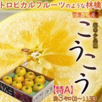 甘さも蜜も規格外のレアりんご!! ゴツゴツとした黄色い果皮に「強烈に入った蜜」!! 傷んでるのかな?...