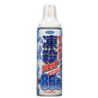 フマキラー 這う虫 飛ぶ虫 凍殺ジェット (300ml)