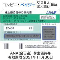 ANA(全日空)株主優待券 有効期限2021年11月30日