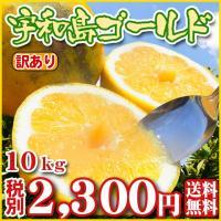 宇和島ゴールドは3度味が変わる不思議なみかんです。 4月初旬〜5月中旬は「甘ぷるジューシー食感!」 ...