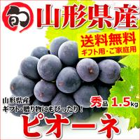 ピオーネは巨峰の血を受け継ぎ、巨峰とマスカットの交配種です。色は濃い紫から紫黒色で、粒が非常に大きく...