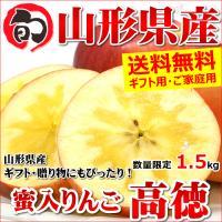 蜜入り りんご 高徳 1.5kg 山形県産 リンゴ こうとく ギフト 贈り物 贈答 お歳暮 山形県 送料無料 お取り寄せ