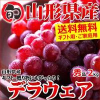 ■商品名:山形県産 ブドウ デラウェア ■商品内容:1箱 約2.0kg(秀品/8房〜16房) ※秀品...