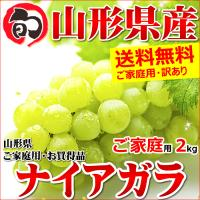 ■商品名:山形県産 ブドウ ナイアガラ ■商品内容:1箱 約2.0kg(3房〜10房) ※ご家庭用(...