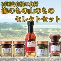 海のもの山のもの セレクトセット 沖縄 人気 定番 土産  送料無料