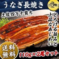 うなぎ 国産 最高級 四万十うなぎ 蒲焼き 長焼き 2尾セット ギフト お取り寄せグルメ 鰻 送料無料