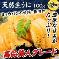生うに チリ産 ウニ 最高級Aグレード 100g 刺身用 ミョウバン不使用 無添加 冷凍