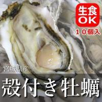 宮城県産の殻付き牡蠣!味が濃厚と評判です。-196℃で水揚げから短時間で急速冷凍!旨味を閉じ込めまし...
