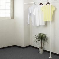 ネジやクギ不要!壁を傷つけないのでマンションでも使えるつっぱりタイプのハンガーラック(3m用)です。...