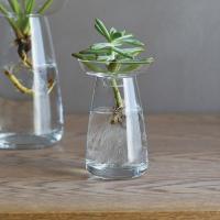 植物が水の中で育っていく美しい家庭を楽しめる花器。 多様な植物の成長や手入れのしやすさを考慮し、二つ...