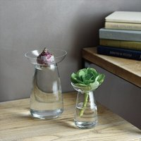 植物が水の中で育っていく美しい家庭を楽しめる花器。多様な植物の成長や手入れのしやすさを考慮し、二つの...