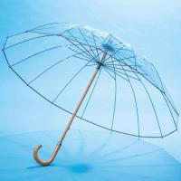 タダモノではない透明傘です。頑丈なグラスファイバー骨と、風だけが通り抜ける逆止弁で、ちょっとやそっと...