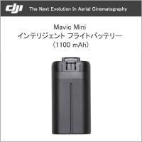 Mavic Mini インテリジェント フライトバッテリー (1100 mAh) DJI認定ストア 定形外