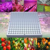 ■【水耕栽培の特徴】: ● 室内等の植物の育成に   太陽光が入りにくい場所で植物を育てる際に、光合...