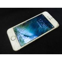 docomo ドコモ アップル iphone5s 64GB ME340J/A ゴールド 動作確認済 ...