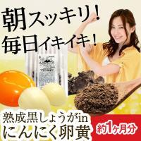 にんにく卵黄 熟成黒しょうがinにんにく卵黄 62粒 約1か月分