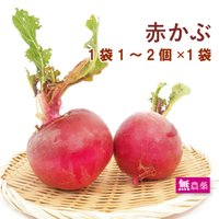 原材料:赤かぶ(1〜2個):栃木:根岸農園   商品説明:無農薬栽培のやや大きめの色鮮やかな赤カブで...
