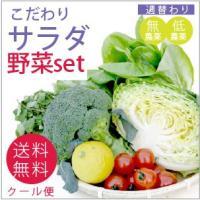 こだわりサラダ野菜セット【送料無料】  セット内容:サラダにおススメの無・低農薬野菜をセットにしまし...