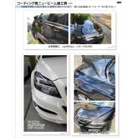 コーティング剤 ニュービーム 40gセット   ガラス系コーティング剤 車 最新ビューコート 日本製|viewcoat|07