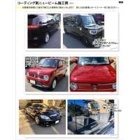 コーティング剤 ニュービーム 40gセット   ガラス系コーティング剤 車 最新ビューコート 日本製|viewcoat|08